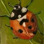 Lady Bug Mini Plein Air Out..
