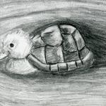 Turtle Duck Pencil Drawing ..