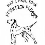 Dalmatian Dog Drawing Blank..