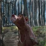 Brown Bear Illustration Art..