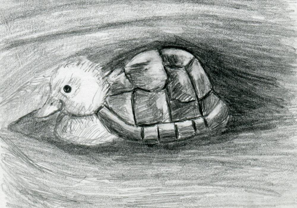 Turtle Duck Pencil Drawing Black and White Print - Hybrid Animals Series